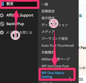 WP One Metric Setting